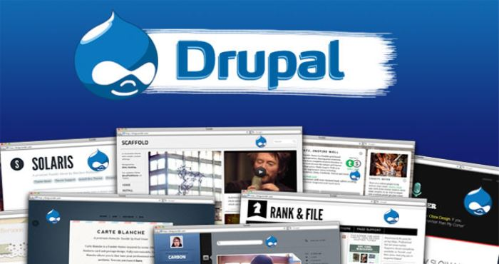 Why Drupal is an Ideal CMS For Digital Publishing Industry?