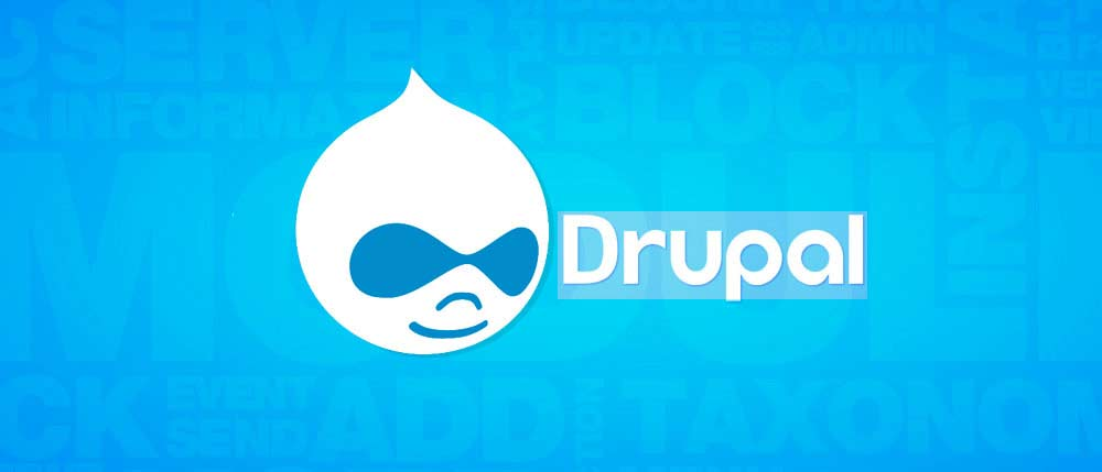 6 Drupal Features That Make It Apt For Custom Web Applications