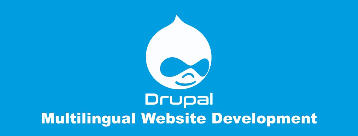 drupal 8 developer