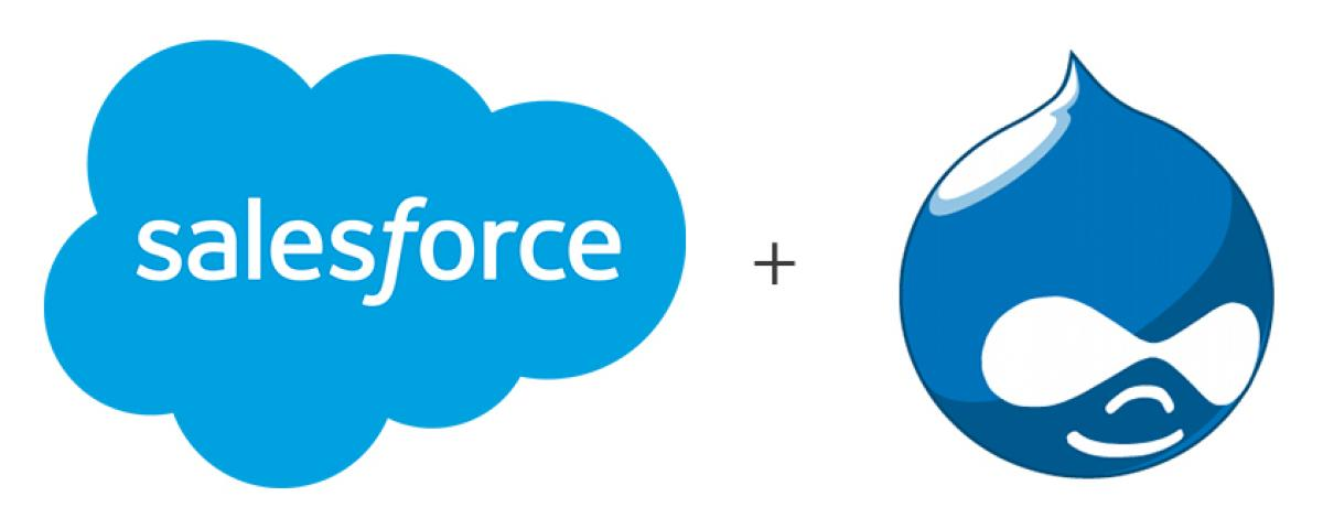 Drupal and Salesforce Integration to Boost Your Business Productivity