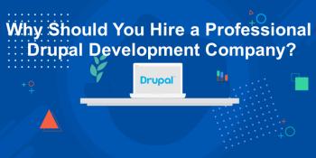 Why-shouid-you-hire-Drupal-Development-company