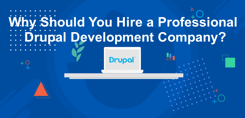 Why Should You Hire a Professional Drupal Development Company?