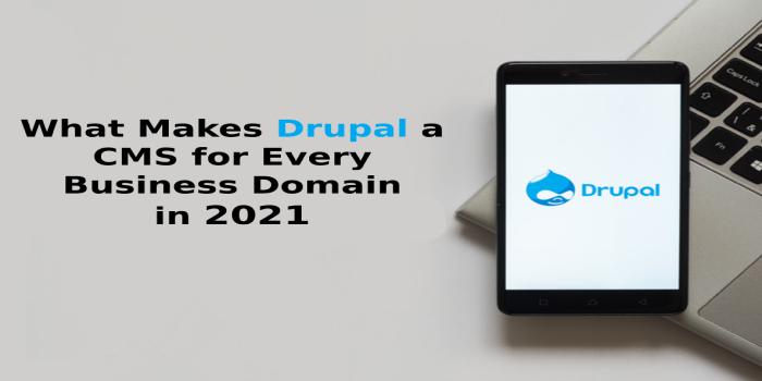 What Makes Drupal a CMS for Every Business Domain in 2021?