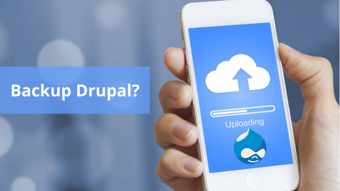 How to Backup Drupal? Overview of the Backup and Migrate Module